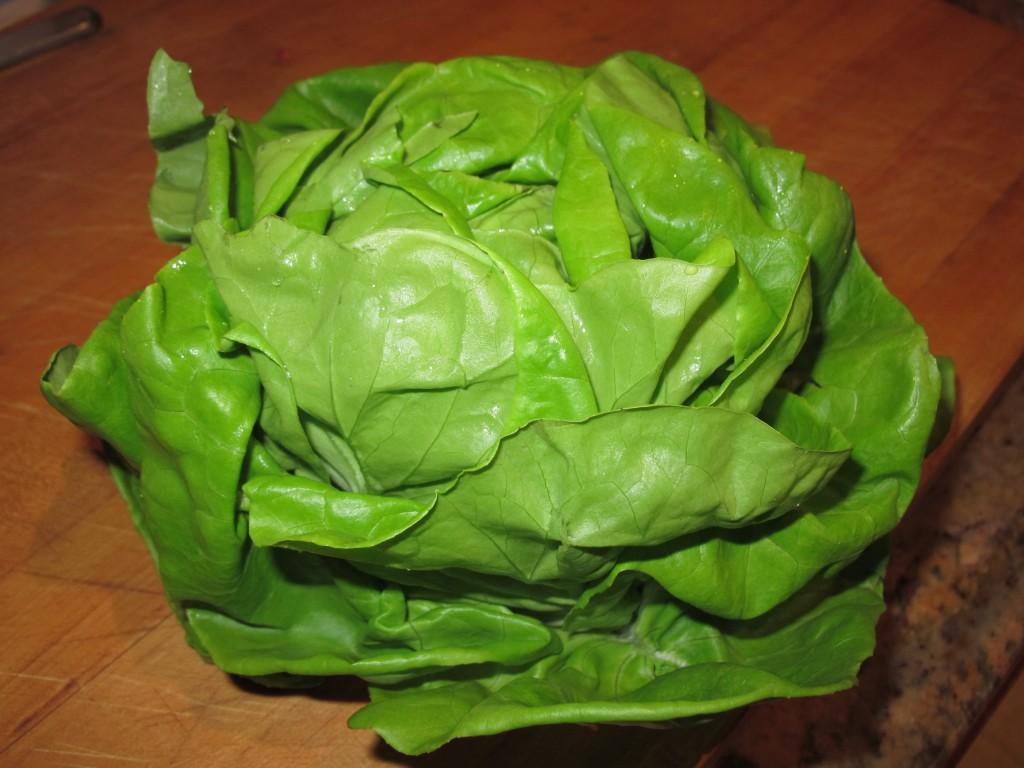 lettucewraps7